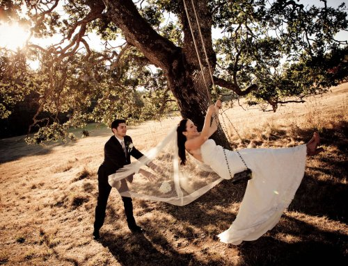 Wedding couple on tree swing