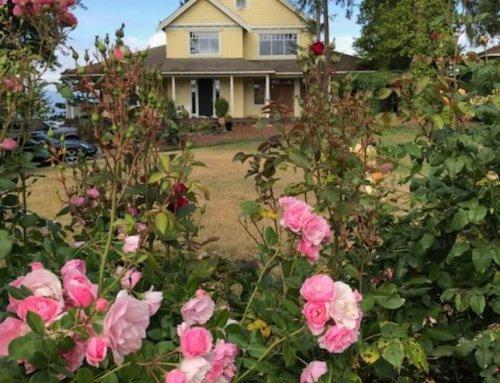 Quarrystone House B&B Roses | Salt Spring Island